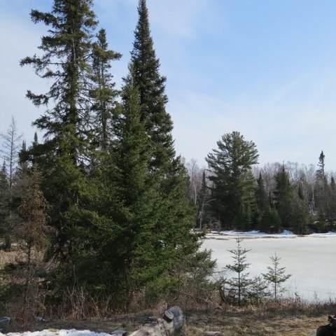 XXX Twin Lakes Road, Morse Twp, MN 55731 (#5730366) :: The Pomerleau Team