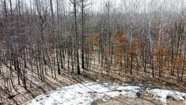 Lot 6 Home Place Drive, Crow Wing Twp, MN 56401 (#5730487) :: Holz Group