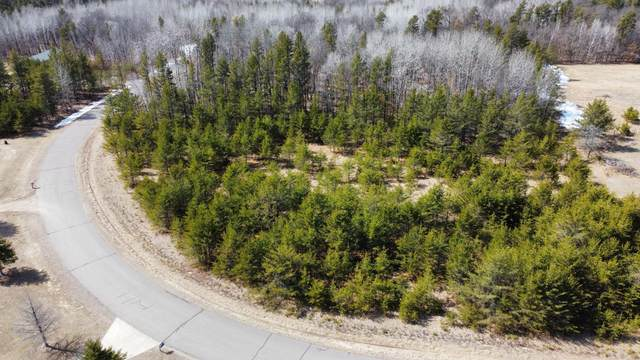 Lot 9 Home Place Drive, Crow Wing Twp, MN 56401 (#5730489) :: Holz Group