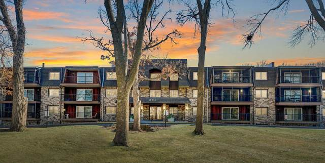 260 Westview Drive #205, West Saint Paul, MN 55118 (#5731114) :: Twin Cities South