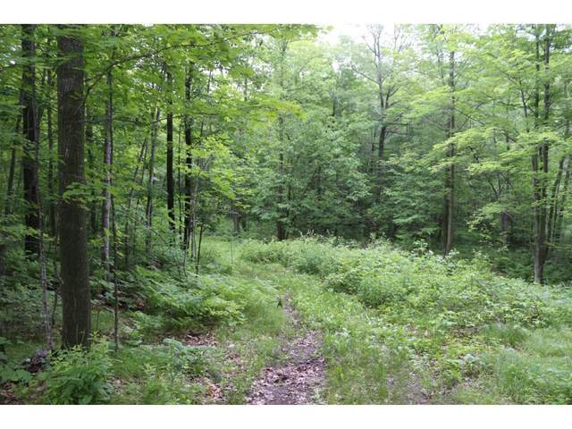 Lot 12 Eagle View Court, Minong, WI 54859 (#5732073) :: Lakes Country Realty LLC