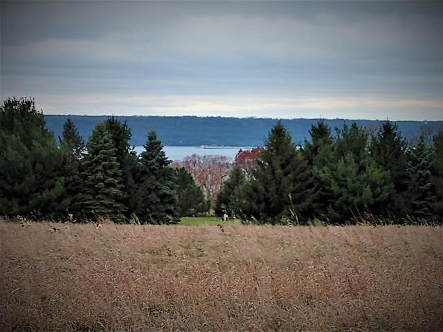 67 Acres 451st, Maiden Rock, WI 54750 (#5732085) :: Holz Group