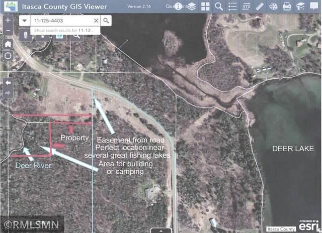 35263 W Deer Lake Road, Deer River, MN 56636 (#5732217) :: Lakes Country Realty LLC