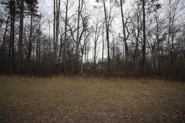 Lot 4 Blk 1 Clearwater Road, Baxter, MN 56425 (#5733798) :: Straka Real Estate