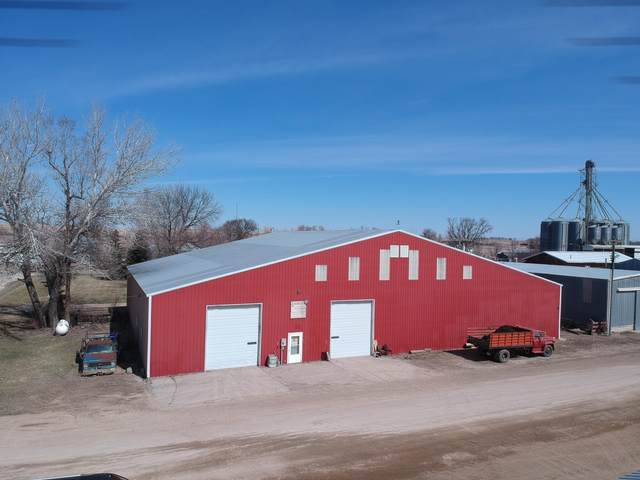113 1st Street W, Odessa, MN 56276 (#5733865) :: Lakes Country Realty LLC