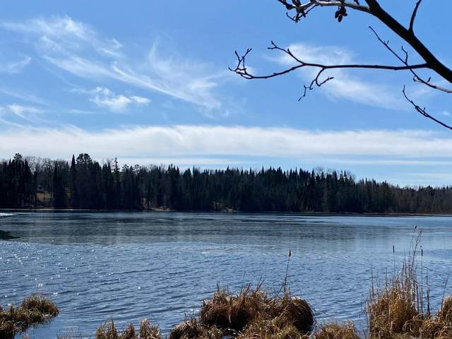 TBD Far Portage Dr, Park Rapids, MN 56470 (#5734042) :: Lakes Country Realty LLC