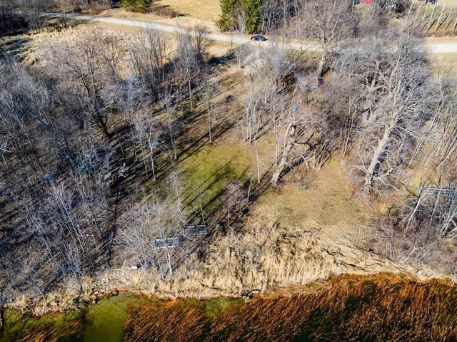 29xxx Norway Lake Trail, Underwood, MN 56586 (#5734076) :: Bre Berry & Company