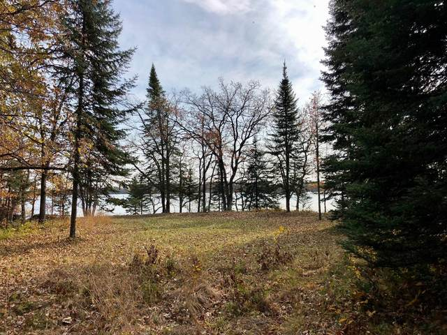 6866 Indian Trail Lane, Chickamaw Beach, MN 56474 (#5734775) :: Holz Group