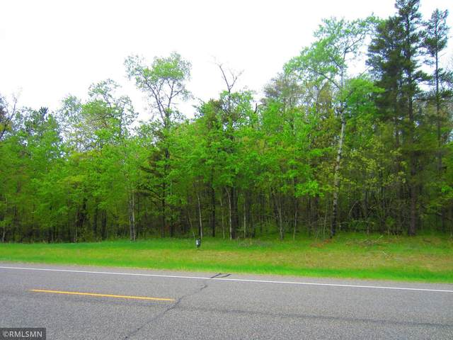 000 County Rd. 39, Breezy Point, MN 56472 (#5735475) :: The Pomerleau Team