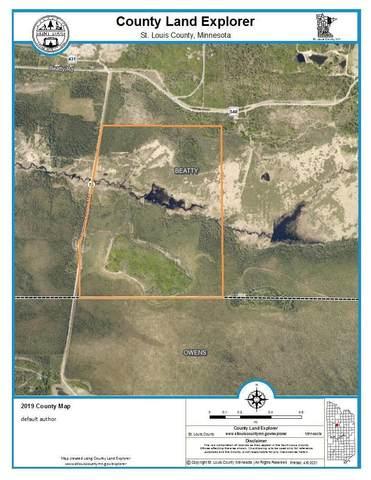 xxx 290 Vermilion Lake Road, Cook, MN 55723 (#5735949) :: The Pietig Properties Group