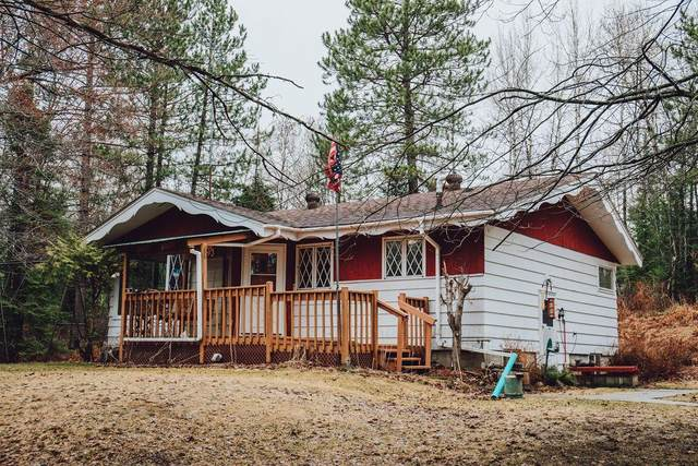 7390 135th N, Embarrass, MN 55732 (#5736590) :: The Janetkhan Group
