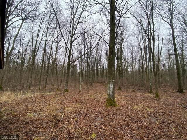 XXXX W Wildlife Drive, Brook Park, MN 55007 (#5736984) :: Lakes Country Realty LLC