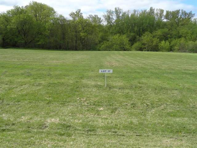 Lot 17 Nelson Drive, Elmwood, WI 54740 (#5737197) :: Twin Cities Elite Real Estate Group | TheMLSonline