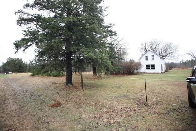 20203 County Road 1, Emily, MN 56447 (#5738008) :: The Pomerleau Team