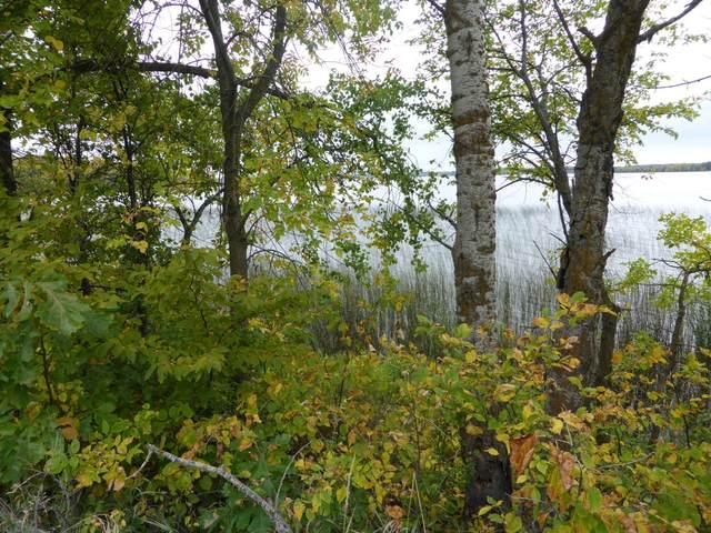 Xxx Stalker Lake Road, Tordenskjold Twp, MN 56515 (#5738253) :: Bre Berry & Company