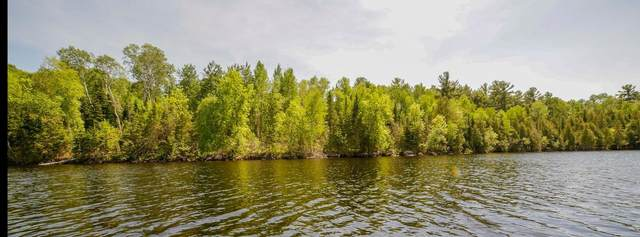 TBD Pine Island N, Tower, MN 55790 (#5738366) :: Lakes Country Realty LLC
