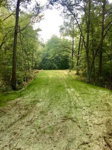 XXXX NW River Ridge Road, Wyanett Twp, MN 55008 (#5738409) :: The Pomerleau Team