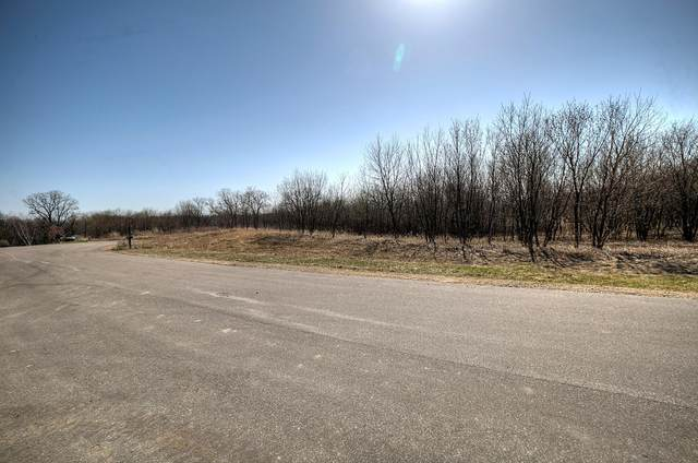 137 Westwood Drive N, Red Wing, MN 55066 (MLS #5738449) :: RE/MAX Signature Properties