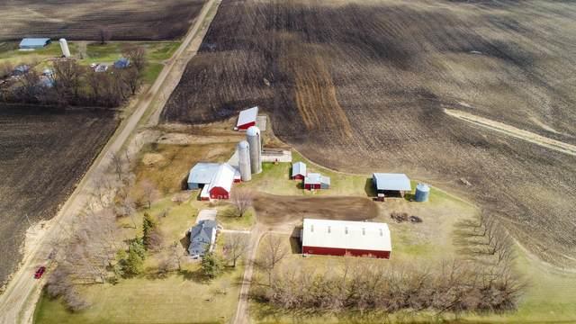 13141 County Road 110 SE, Villard, MN 56385 (#5738575) :: Bos Realty Group