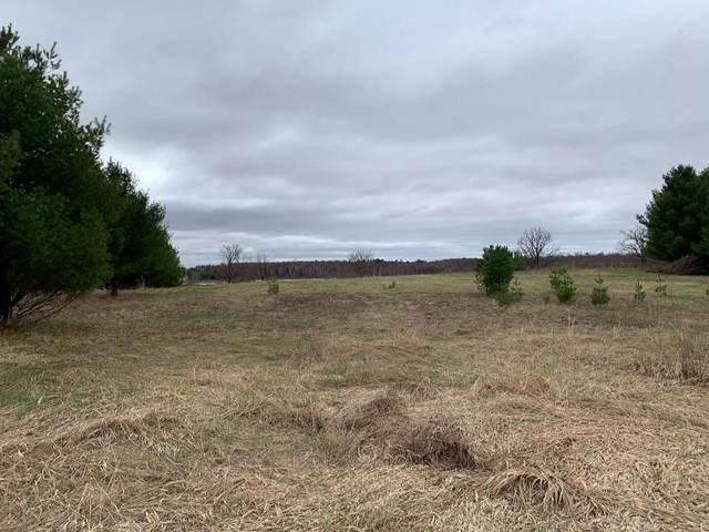 Lot 1 145th Avenue, Amery, WI 54001 (#5739254) :: Lakes Country Realty LLC