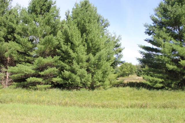 TBD Pinto Drive, Browerville, MN 56438 (MLS #5739450) :: RE/MAX Signature Properties