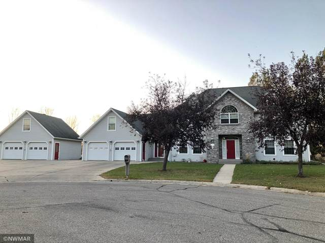 101 Apple Tree Court, Thief River Falls, MN 56701 (#5740113) :: Happy Clients Realty Advisors