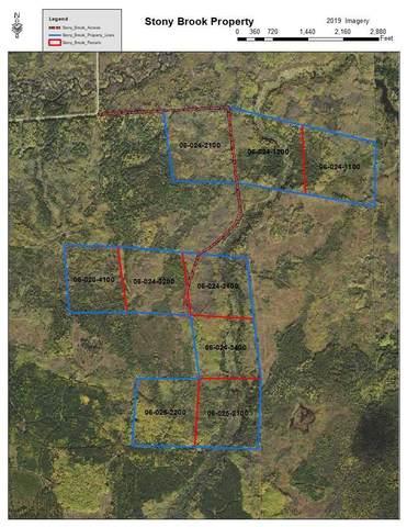 XXX Bearville 528, Cook, MN 55723 (#5740258) :: Holz Group