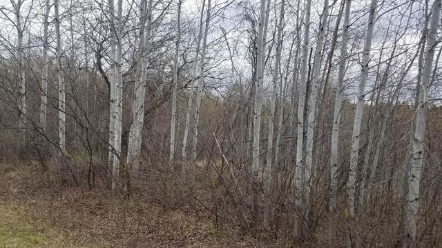 Lot 1 North Boundary Road/145Th, Glenwood City, WI 54013 (#5740766) :: The Odd Couple Team