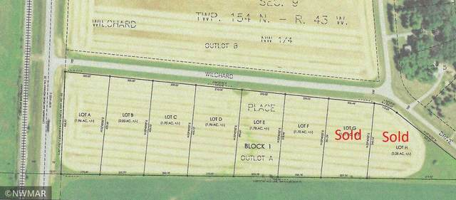 Lot A Willchard Drive, Excel Twp, MN 56701 (MLS #5740971) :: RE/MAX Signature Properties