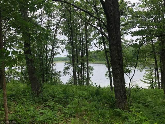 TBD Turtle Lake Drive NW, Walker, MN 56484 (#5741610) :: Servion Realty