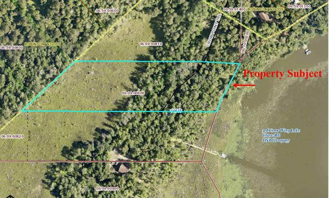 TBD Crown Point Trail, Nevis, MN 56467 (#5741678) :: Servion Realty