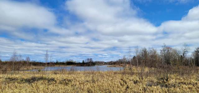 XYZ Miller Lake Road, Finlayson, MN 55735 (#5741764) :: Lakes Country Realty LLC