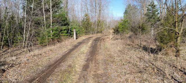 XXX N 1st Avenue NE, Sauk Rapids, MN 56379 (#5741816) :: Holz Group