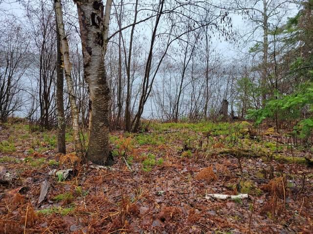 TBD Otter Ridge Trail, Bigfork, MN 56628 (#5741826) :: Holz Group