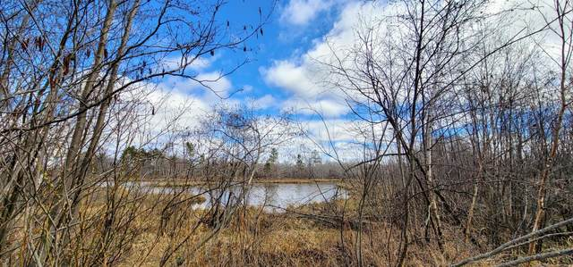 XXX Miller Lake Road, Finlayson, MN 55735 (#5741836) :: Lakes Country Realty LLC