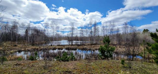 XXX Parvey Line Road, Finlayson, MN 55735 (#5741852) :: Lakes Country Realty LLC
