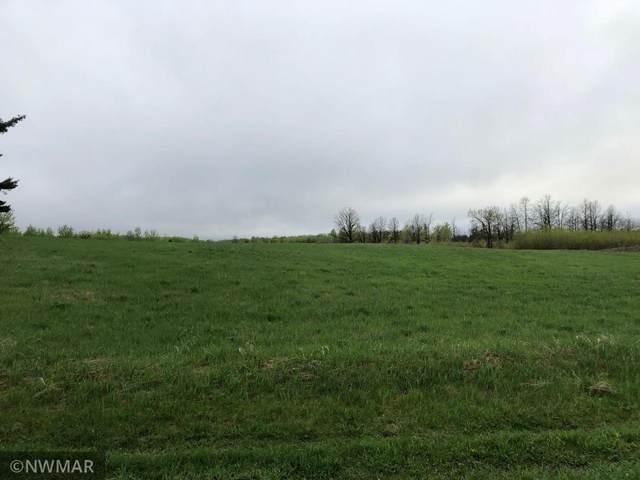 80a Birchwood Road NE, Tenstrike, MN 56685 (#5742142) :: Lakes Country Realty LLC