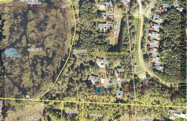 1015 #2 Ladyslipper Lane, Park Rapids, MN 56470 (MLS #5742913) :: RE/MAX Signature Properties