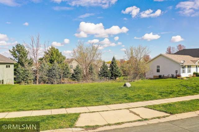 2406 Valley Drive, Northfield, MN 55057 (#5743788) :: The Janetkhan Group