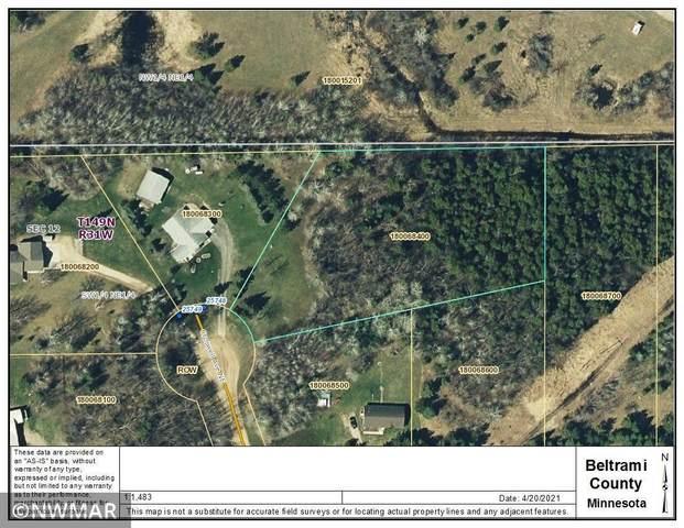Lot 9 Croswell Avenue NE, Hines Twp, MN 56630 (#5743941) :: Holz Group