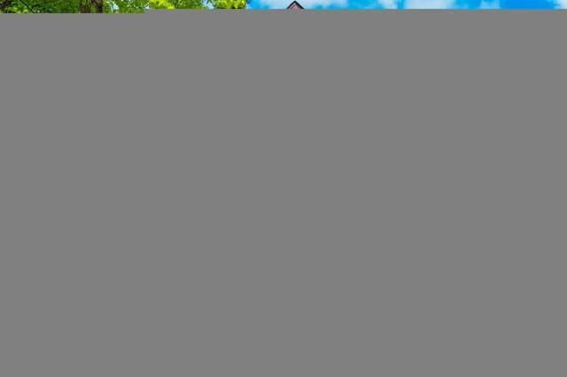 26050 Oak Lane #1, Nisswa, MN 56468 (#5745198) :: Tony Farah | Coldwell Banker Realty