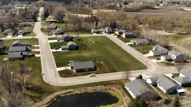 553 Coleman Avenue E, Eden Valley, MN 55329 (MLS #5746338) :: RE/MAX Signature Properties