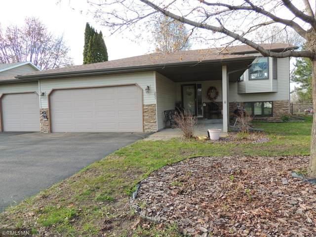 251 Poplar Drive, Shoreview, MN 55126 (#5747069) :: Carol Nelson | Edina Realty
