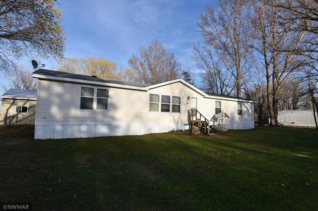 206 Guinan Avenue N, Goodridge, MN 56725 (#5747829) :: Happy Clients Realty Advisors