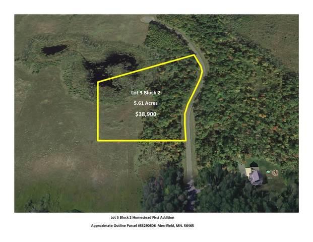 TBD Buckhorn Trail, Center Twp, MN 56465 (MLS #5748077) :: RE/MAX Signature Properties