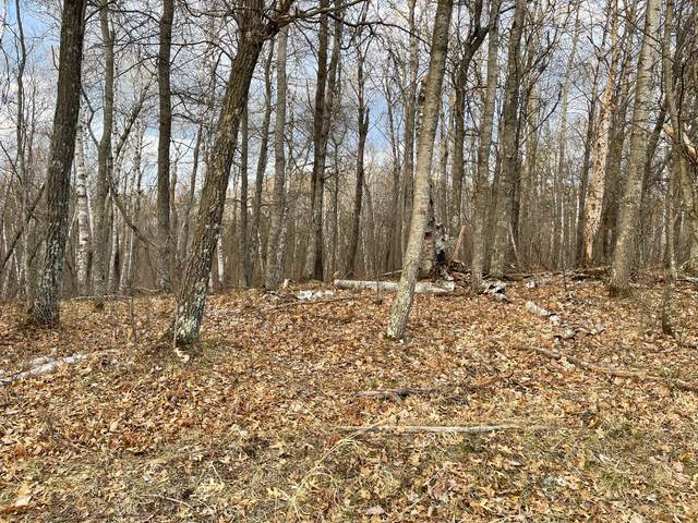 Lot 17 Blk 1 White Overlook, Breezy Point, MN 56472 (MLS #5749817) :: RE/MAX Signature Properties