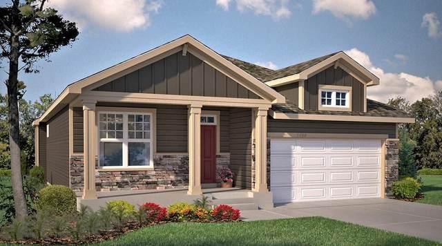 19418 Grass Lake Trail, Rogers, MN 55374 (MLS #5749900) :: RE/MAX Signature Properties