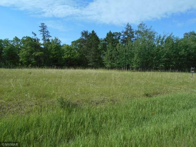 TBD Golf View Drive NE, Bemidji, MN 56601 (MLS #5750847) :: RE/MAX Signature Properties