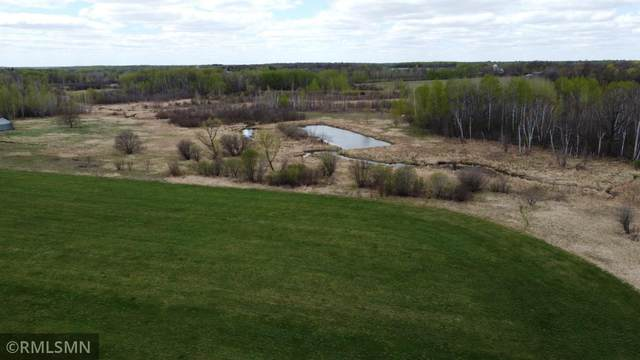 177XX 90th Avenue, Borgholm Twp, MN 56353 (#5751775) :: Lakes Country Realty LLC
