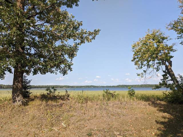 49128 372nd Place, Palisade, MN 56469 (#5751798) :: Happy Clients Realty Advisors